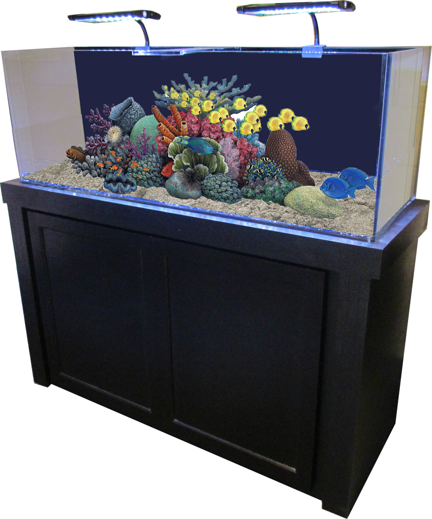 50 Gallon Black Fusion Birch Fish Tank and Stand