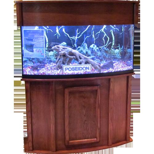 Poseidon Oak Bowfront Series  sc 1 st  Ru0026J Enterprises & Ru0026J Enterprises Bowfront Series Fish Tank Stands