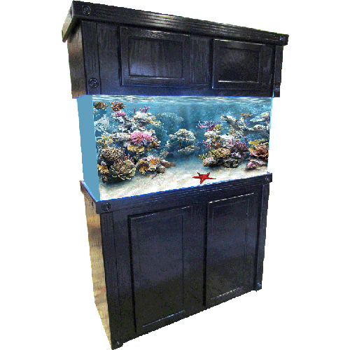 Empire Oak Reef Series  sc 1 st  Ru0026J Enterprises & Ru0026J Enterprises Empire Reef Series Fish Tank Stands