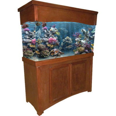 55 gallon Cherry Calypso Fish Tank Stand & Canopy